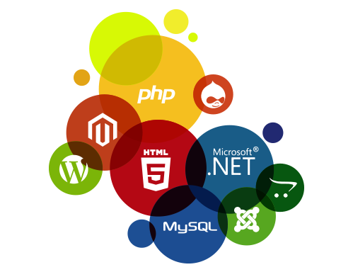 Web Design in Delhi